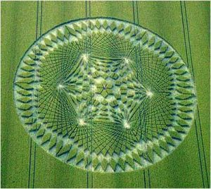 Crop Circle Wiltshire UK