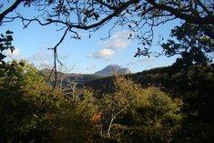 Le Mont Bugarach
