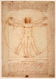 L'Homme de Vitruve - Leonardo de Vinci