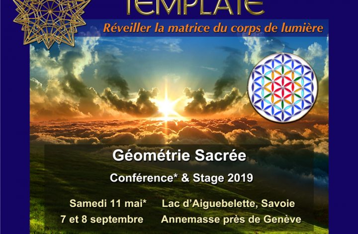 Stages Le Template 2019